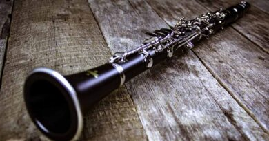 Clarinet the woodwind instrument