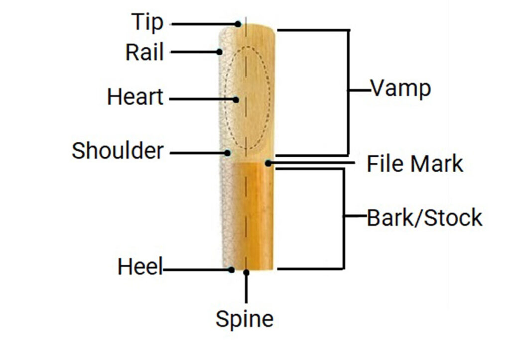 Clarinet's_Reed_Parts