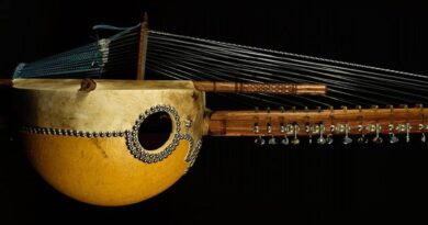 The Kora-African Musical Instrument