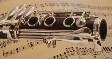 Parts_Of_The_Clarinet_And_Their_Functions_2