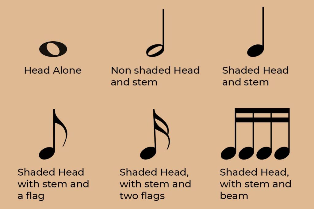 Musical notes and their symbols