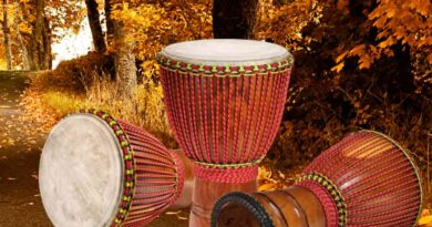 Things You Need To know About The Djembe
