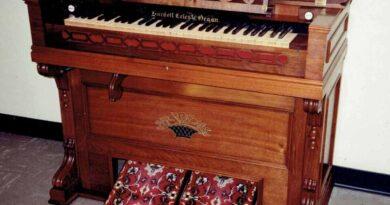 The Reed Organ