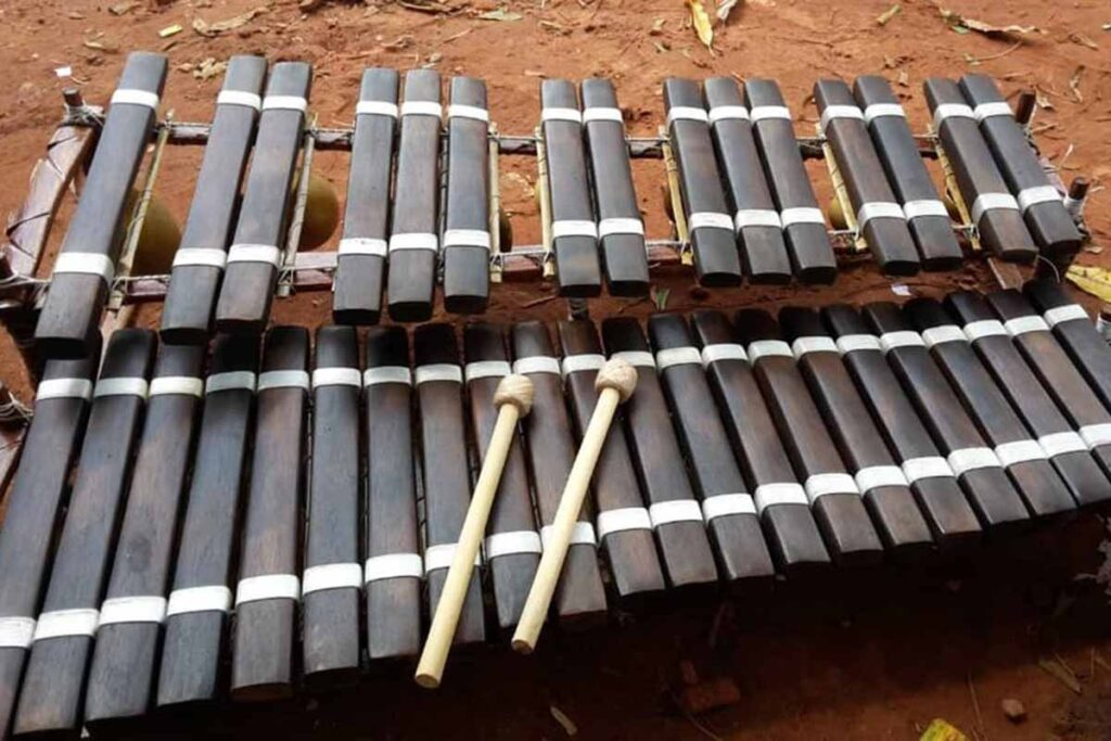 Interesting Information About The Xylophone